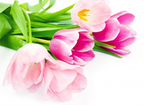 Aromatherapy for Mother's Day