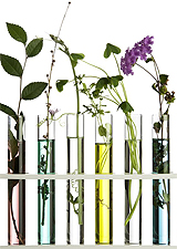 Botanicals in Test Tubes