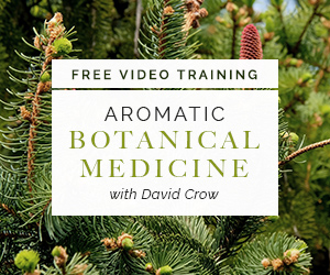 Learn How to Use Essential Oils with David Crow of Floracopeia