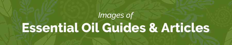 Images of Essential Oil Guides & Articles