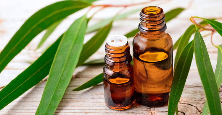 Schools to learn about essential oils