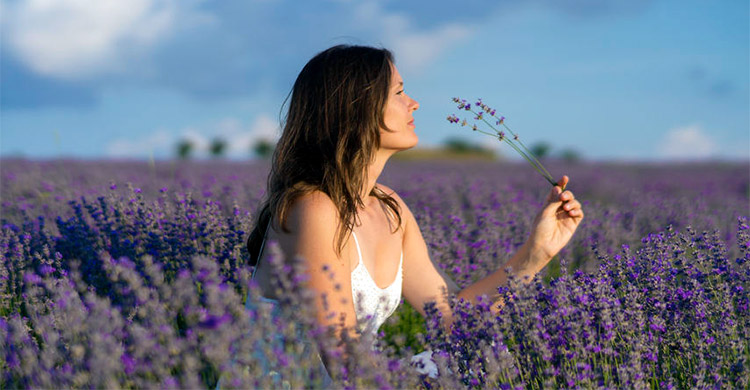 Woman Smelling Lavender, an Essential Oil Bearing Plant