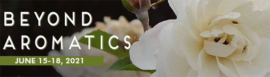National Association for Holistic Aromatherapy Conference