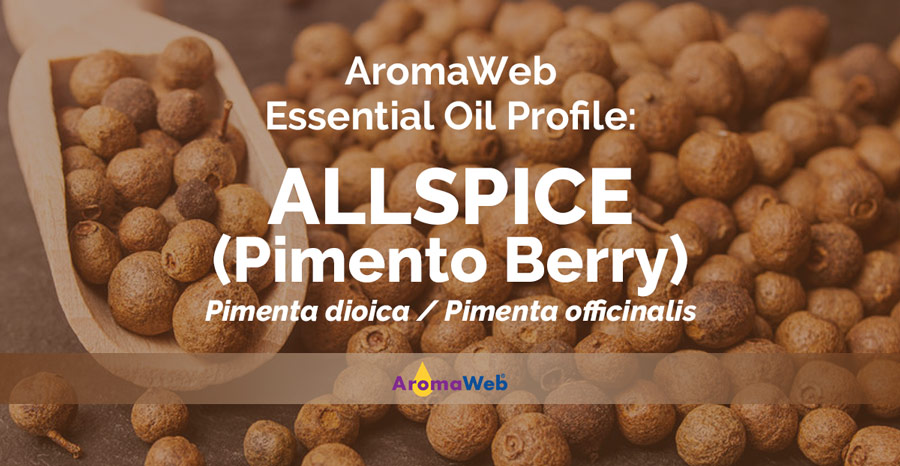 Allspice Essential Oil Uses And Benefits Aromaweb
