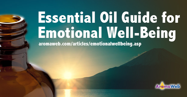 a review of an essential emotion Emotions by hodelpa: emotion / essential - see 1,206 traveler reviews, 2,157 candid photos, and great deals for emotions by hodelpa at tripadvisor.
