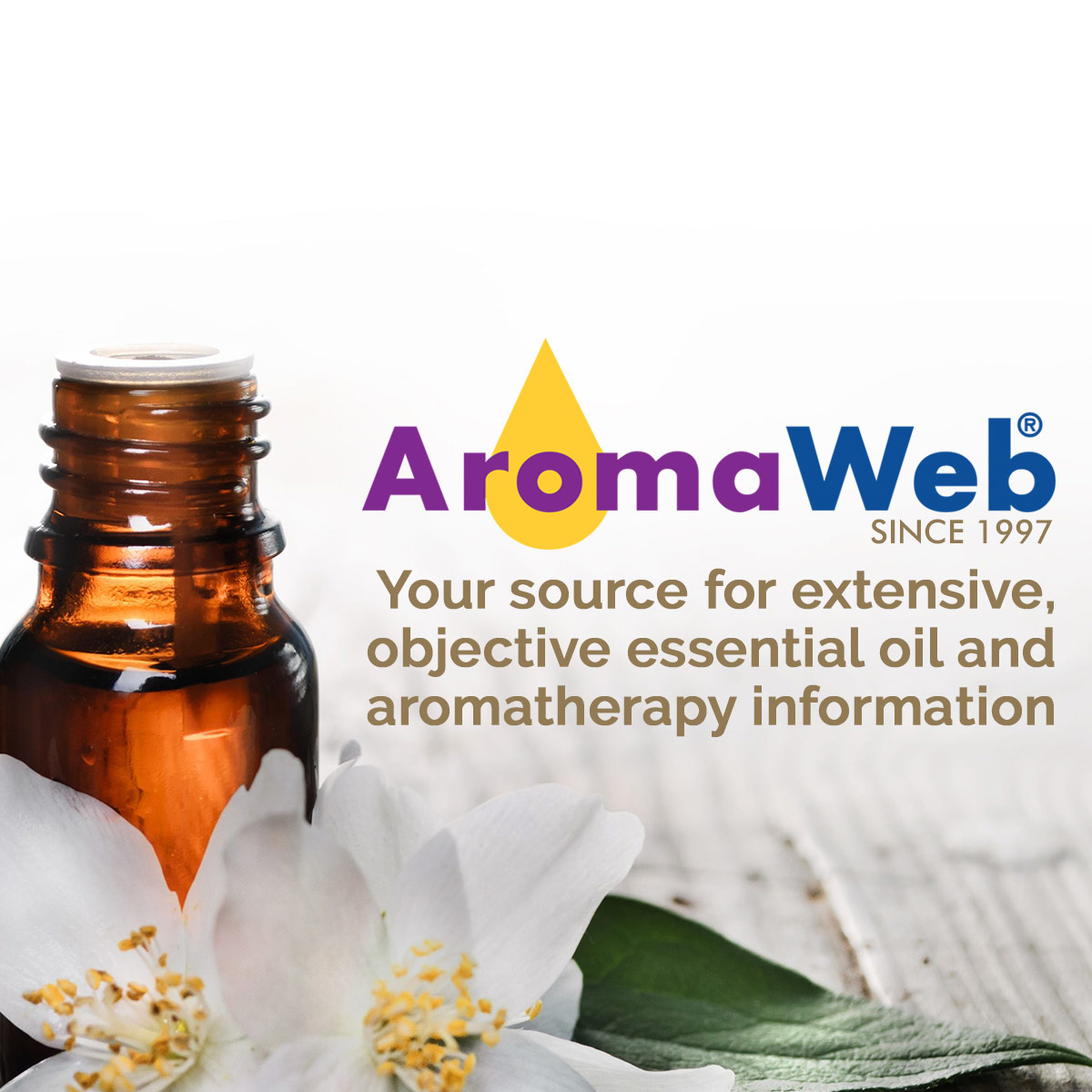aromatherapy articles