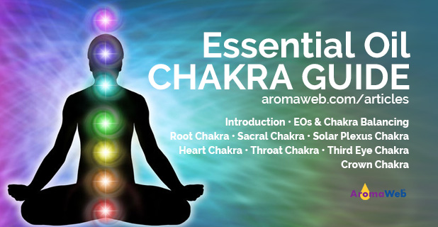 Guide to Essential Oils and the Chakras on AromaWeb