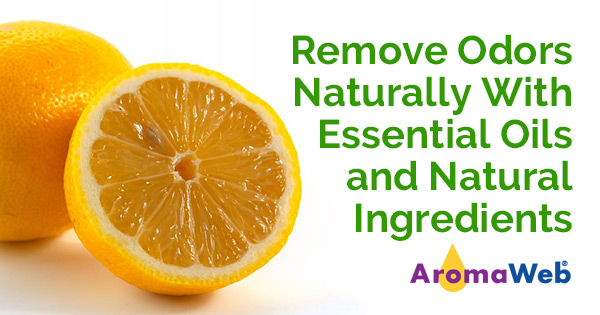 Remove Odors Naturally Using Essential Oils and Other