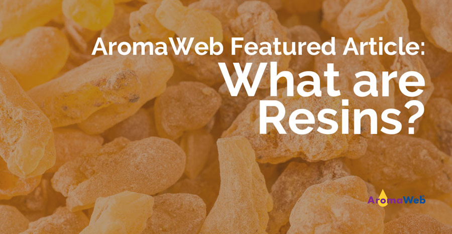 What Are Resins