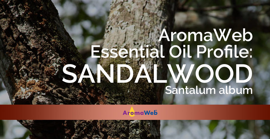 Sandalwood Essential Oil Uses and Benefits | AromaWeb