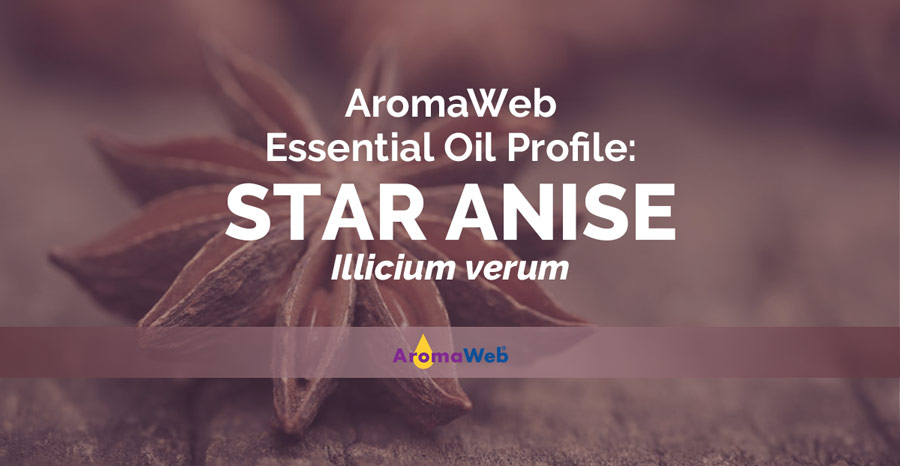 star anise essential oil uses and benefits
