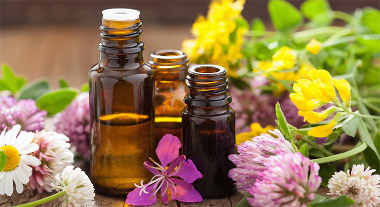 Aromatherapy Oils Definition and Guide | AromaWeb