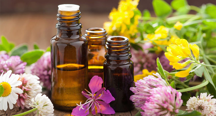 AromaWeb Introductory Guide to Using Essential Oils