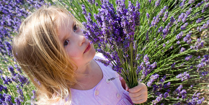 Essential Oils for Children