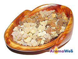 Benzoin Resin and Frankincense Tears
