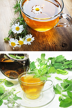 Chamomile and Peppermint Teas