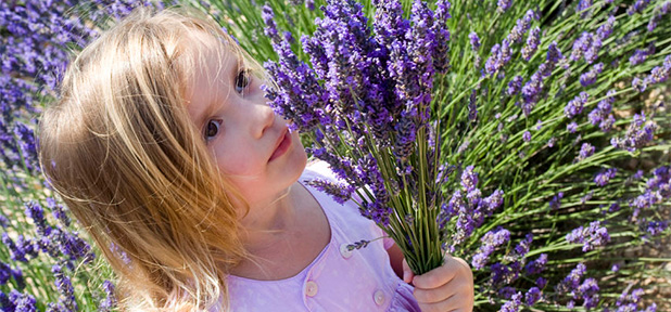 Aromatherapy Recipes for Children