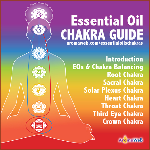 AromaWeb Essential Oil Chakra Guide