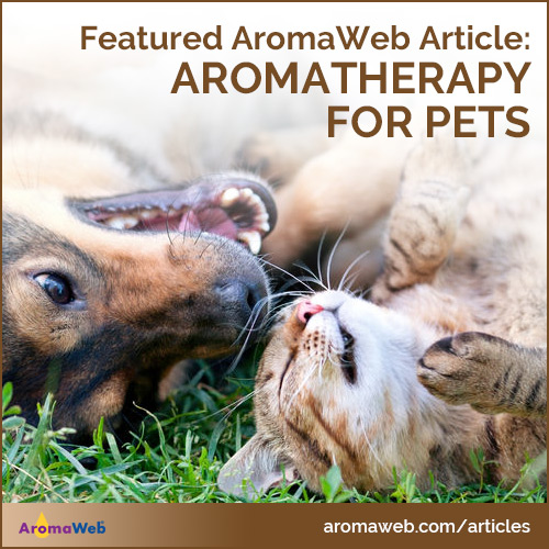 Aromatherapy for Animals and Pets