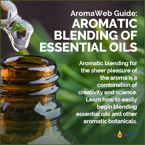 Essential Oil Blending Guide