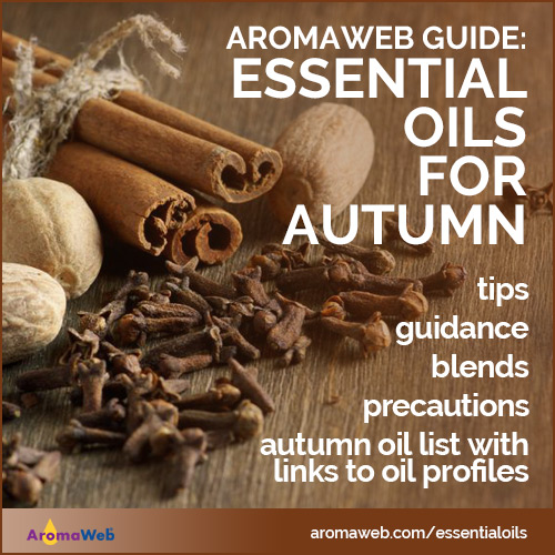 Fall Seasonal Essential Oil Guide on AromaWeb