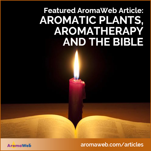 Featured Article: Aromatic Plants, Aromatherapy and the Bible