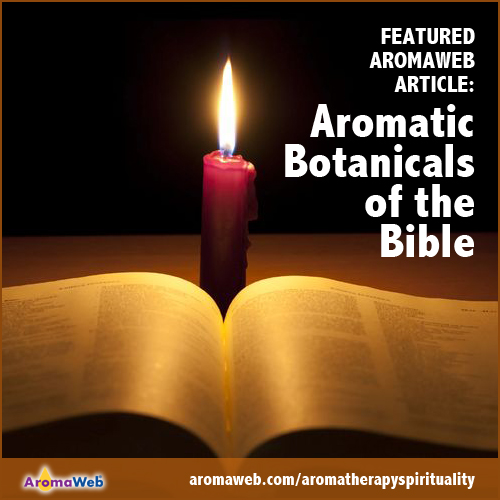 Aromatic Botanicals of the Bible