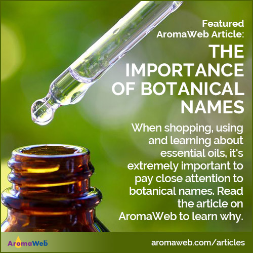 The Importance of Botanical Names for Essential Oils