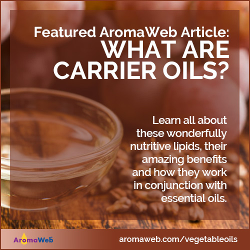 Introduction to Carrier Oils