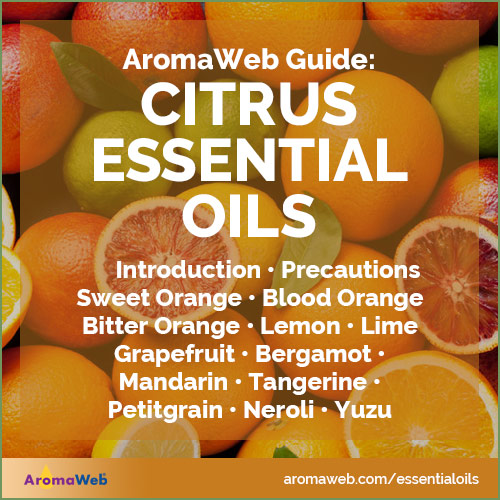 Guide to Citrus Essential Oils