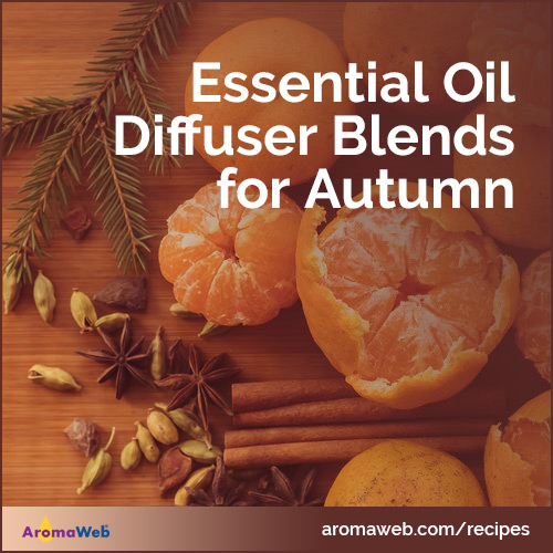 Essential Oil Diffuser Blends for Autumn