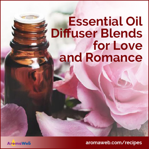 Diffuser Blends for Romance and Love