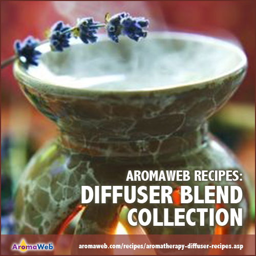 AromaWeb Diffuser Blend Collection