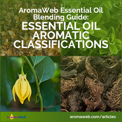 Essential Oil Aromatic Classifications