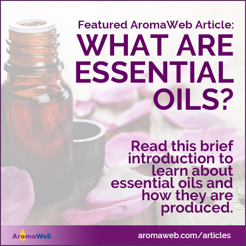Essential Oil Introduction