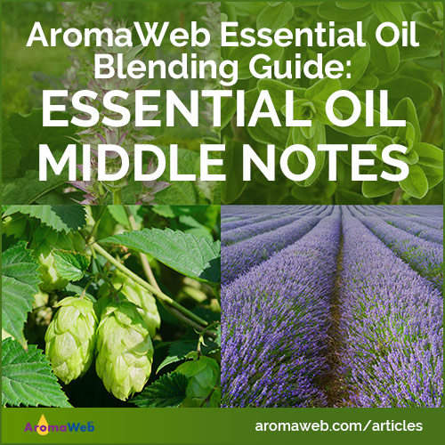 Essential Oil Middle Notes