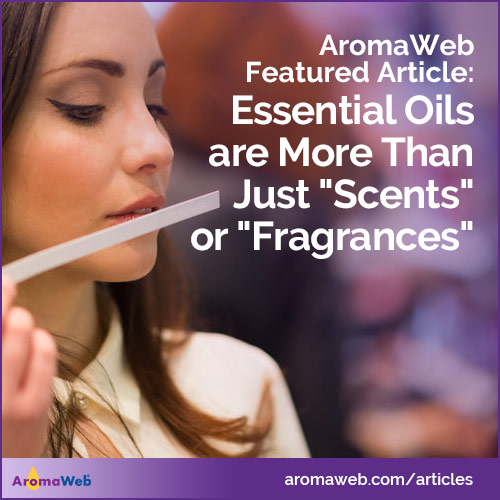 "Essential Oils Are More Than Just ""Scents"" or ""Fragrances"""