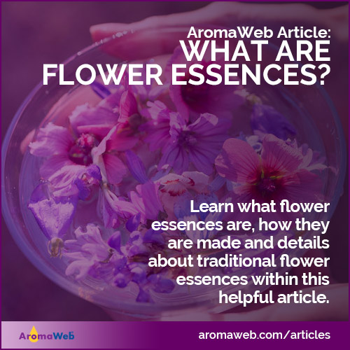 Flower Essence Definition and Information