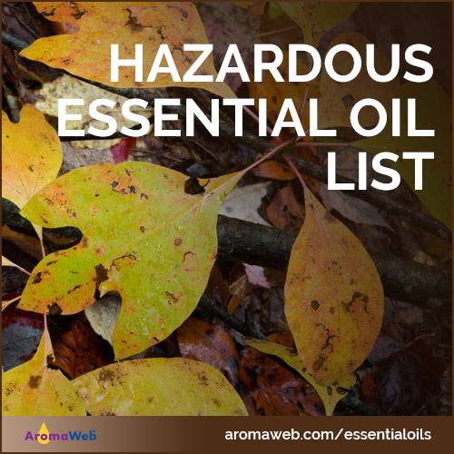 List of Hazardous Essential Oils