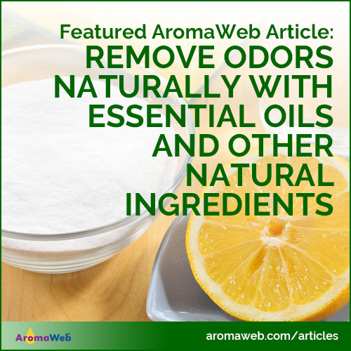 Remove Odors Naturally With Essential Oils and Other Natural Ingredients