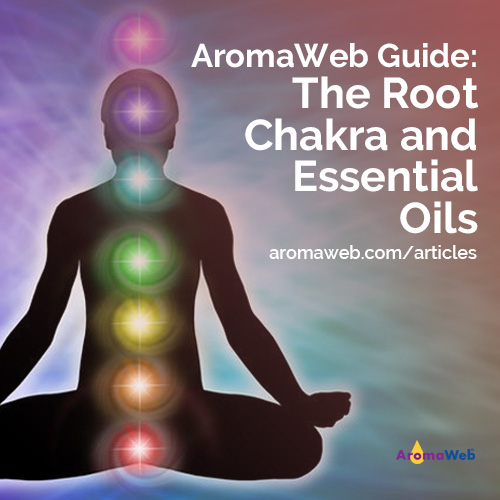 The Root Chakra and Essential Oils