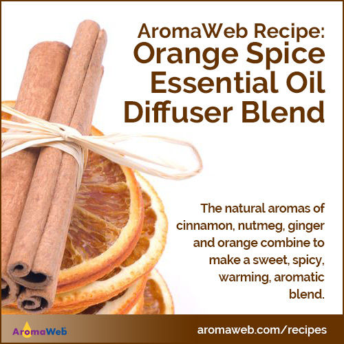 Orange Spice Essential Oil Diffuser Blend