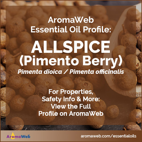 Allspice Essential Oil Profile