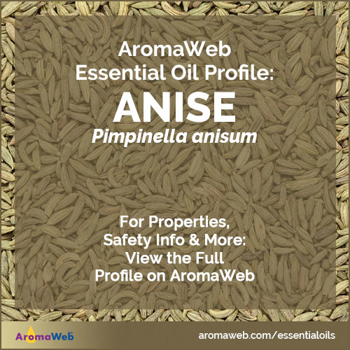 Anise Essential Oil Profile