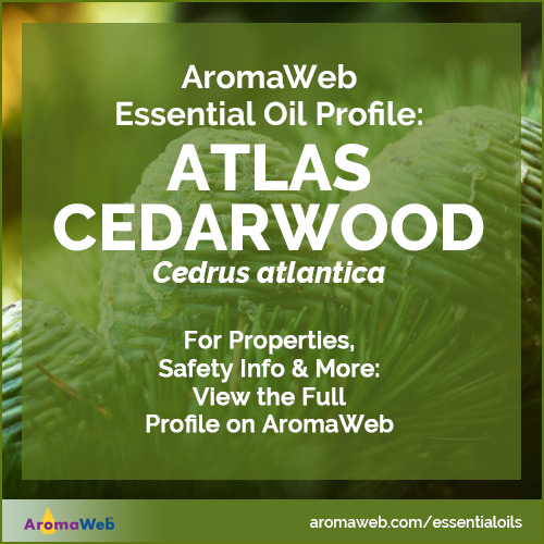 Atlas Cedarwood Essential Oil Profile