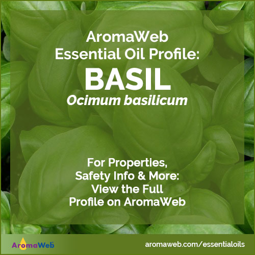 Basil Essential Oil Profile