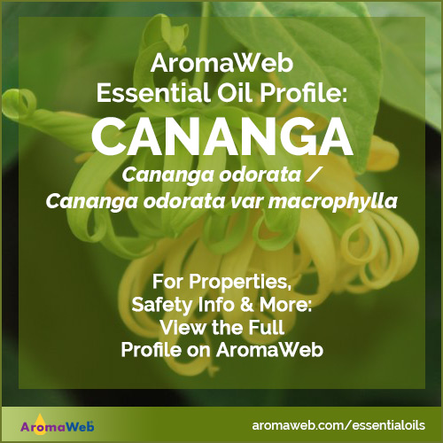 Cananga Essential Oil Profile