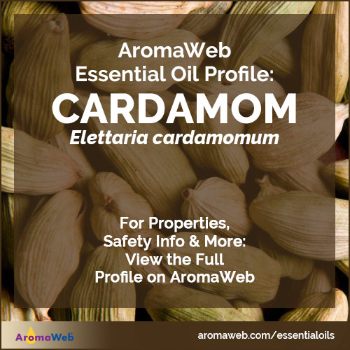 Cardamom Essential Oil Profile