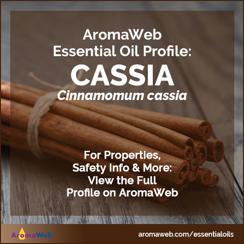 Cassia Essential Oil Profile