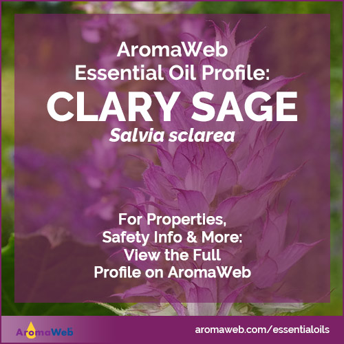 Clary Sage Essential Oil Profile